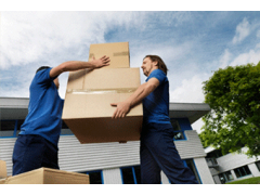 Rego Park Movers