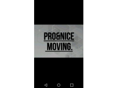 Pro&nice Moving