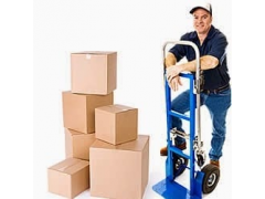 Action Moving Company